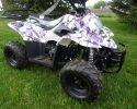 Coolster 3050 C 110cc Army Purple RF