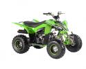 Pentora 125 EFI Green RF