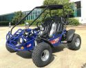 TrailMaster 200E XRS EFI Blue LF