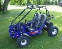 TrailMaster 200E XRX EFI Blue LF