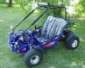 TrailMaster 200E XRX EFI Blue LF2