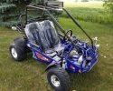 TrailMaster 200E XRX EFI Blue RF high