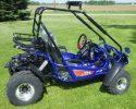 TrailMaster 200E XRX EFI Blue Right 2