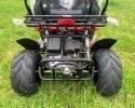 TrailMaster 300 XRS 4 EFI Rear