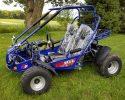 TrailMaster 300 XRS EFI Main Blue LF