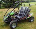 TrailMaster Blazer 200R Green LF