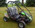 TrailMaster Blazer 200R Green RF