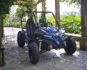 TrailMaster Cheetah 200 Blue RF 3