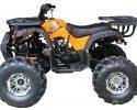 Vitacci Rider 10 DLX Orange Left