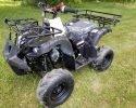Vitacci Rider 7 Carbon Fiber scaled
