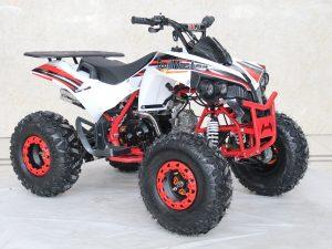 TrailMaster C125 Red white 1