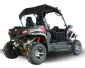 TrailMaster Challenger 300EX Black RR