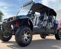 TrailMaster Challenger 4 200EX Blue LF