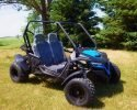 TrailMaster Cheetah 200 EFI Blue RF 2