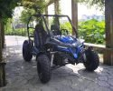 TrailMaster Cheetah 200 EFI Main Blue RF