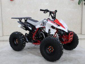 TrailMaster K125 Red RF