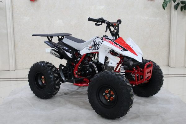 TrailMaster K125 Red RF