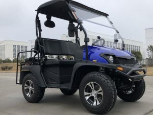 TrailMaster Taurus 200MFV Main Blue RF