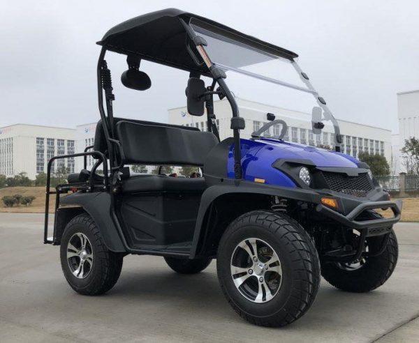 TrailMaster Taurus 200MFV Main Blue RF