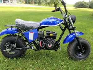 Trailmaster Mini Bike MB200 Main Blue Right scaled